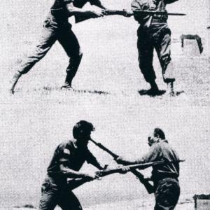 Defensa y combate con Bayoneta
